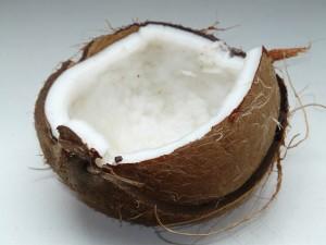 Noix de coco et kokolo